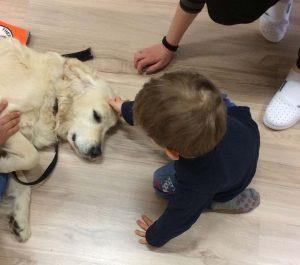 Bambini giocano col cane